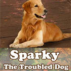 Mäng Sparky The Troubled Dog