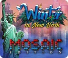 Mäng Winter in New York Mosaic Edition